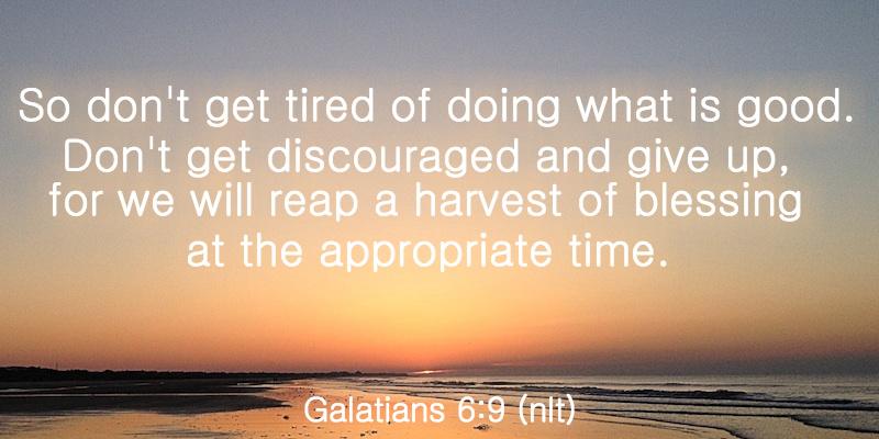 Galatians 6:9 (nlt)