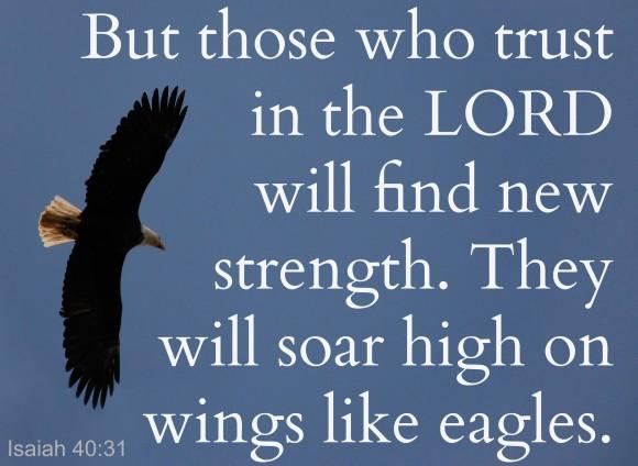 Isaiah 40.31 eagle