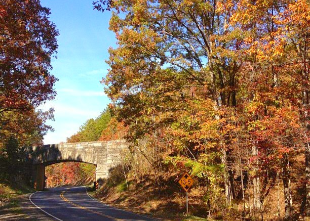 Fall on the parkway