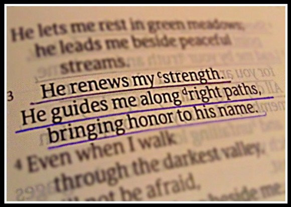 Psalm 23.3 -2 -3
